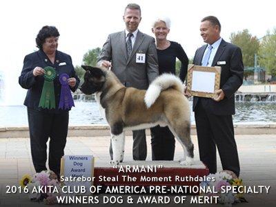 2016 Winners Dog Award of Merit