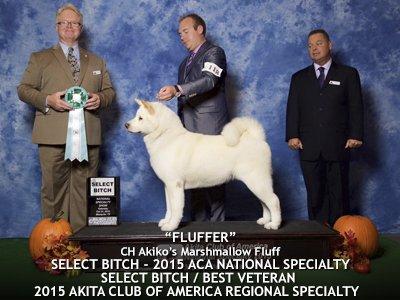 Fluffer