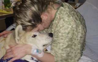 Akita being loved by a patient for Our Happy Dogs.