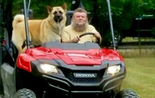Akita riding in a golf cart for Our Happy Dogs.
