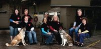 "For story ""The Changing Face of Purebred Rescue"" - shows example of Florida rescued Akitas."