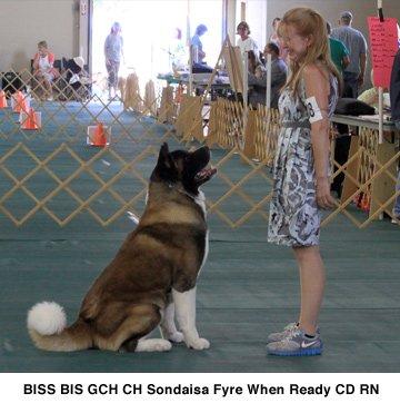 GCH CH Sondaisa Fyre When Ready