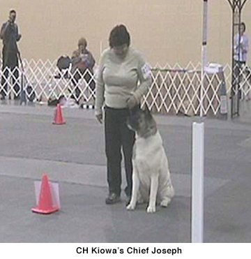 CH Kiowas Chief Joseph