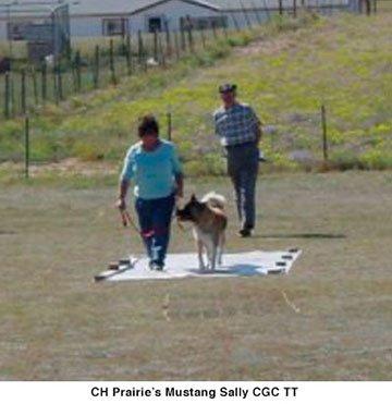CH Prairies Mustang Sally