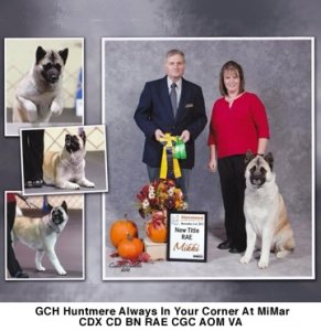 GCH Huntmere Always In Your Corner At MiMar