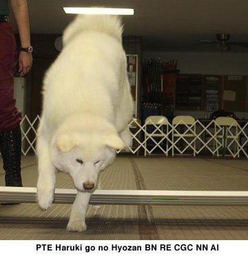 PTE Haruki go no Hyozan